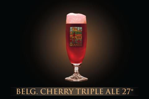 Belgian Cherry Triple Ale 27°