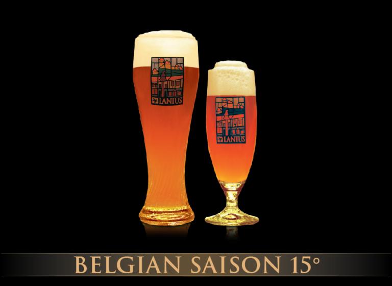 Belgian Saison 15°
