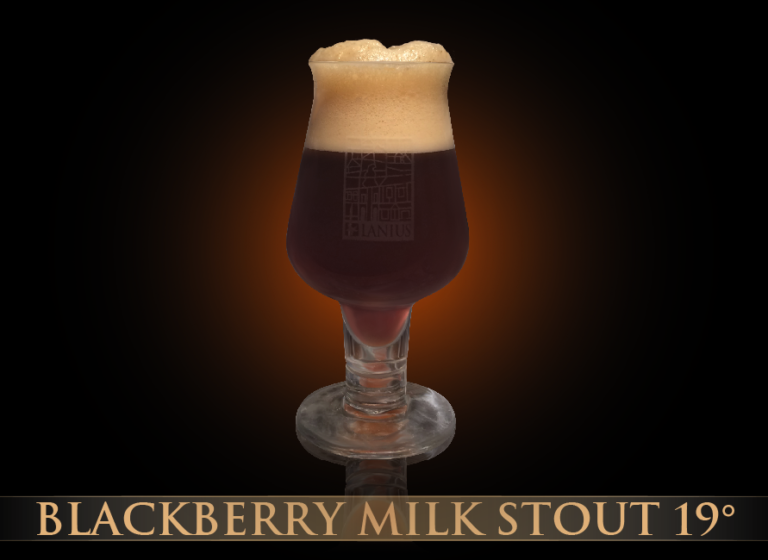 Blackberry Milk Stout 19°