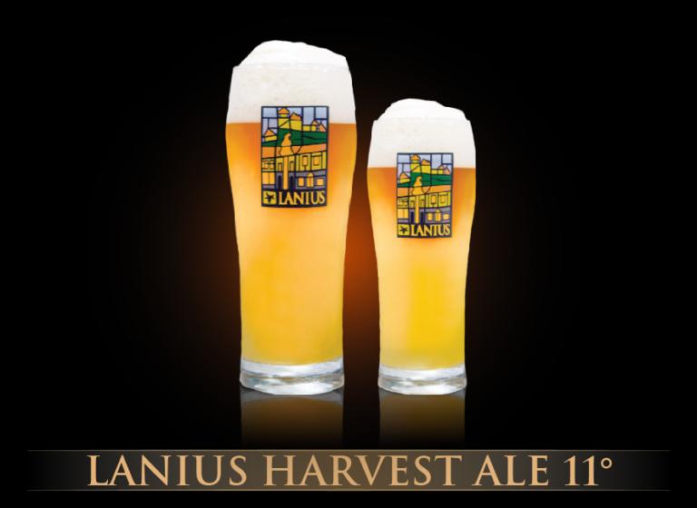 Lanius Harvest Ale 11°
