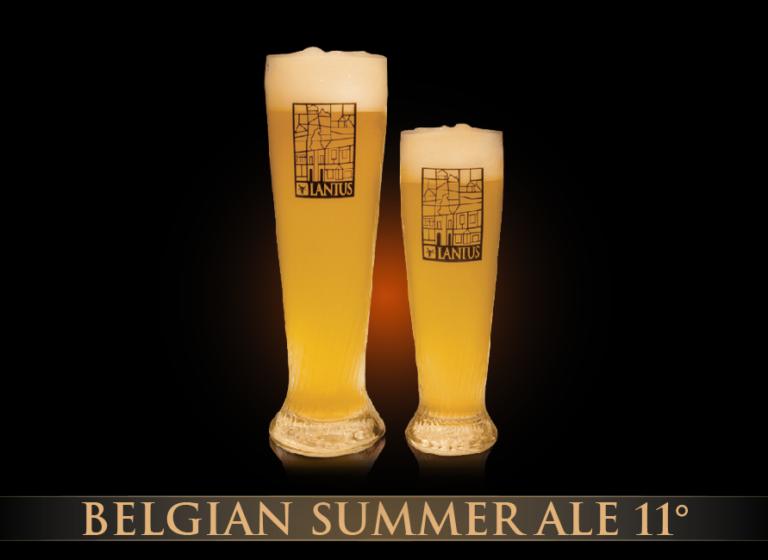 Belgian Summer Ale 13°