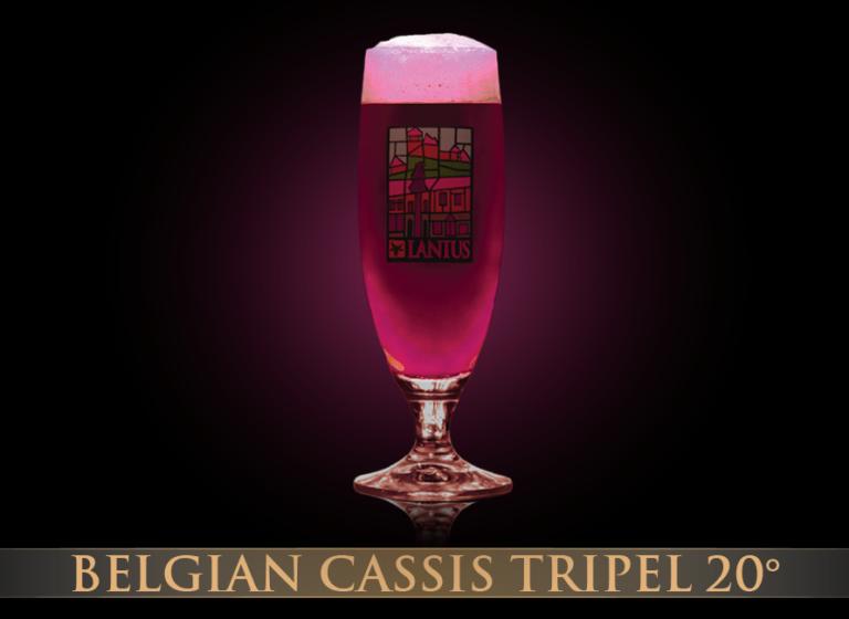 Belgian Cassis Tripel 20°