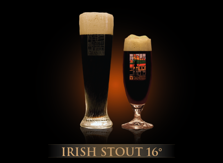 Irish Stout 16°