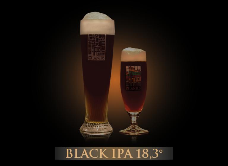 Black IPA 18,3°