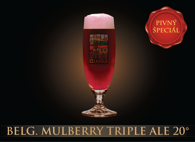 Belg.Mulberry Triple Ale 20 °