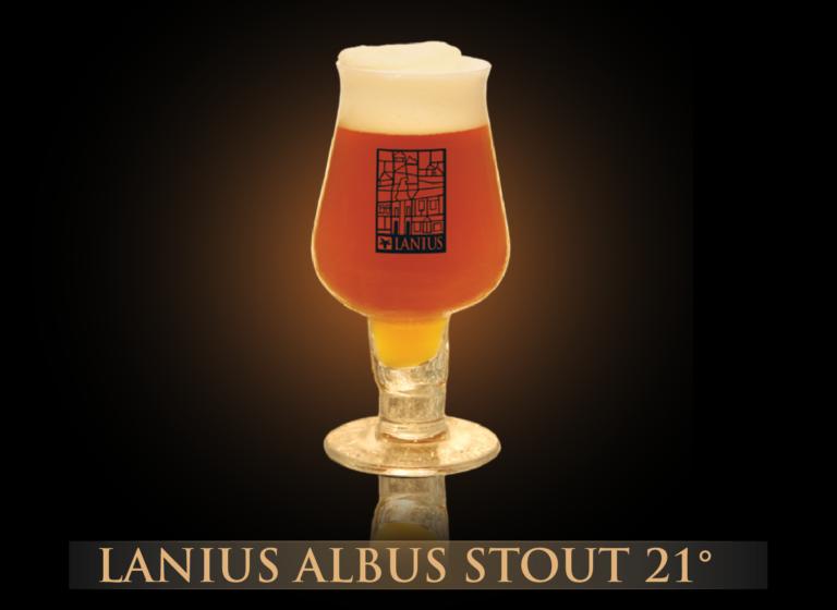Lanius Albus STOUT 21°