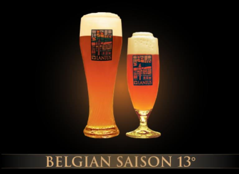 Belgian Saison 13°