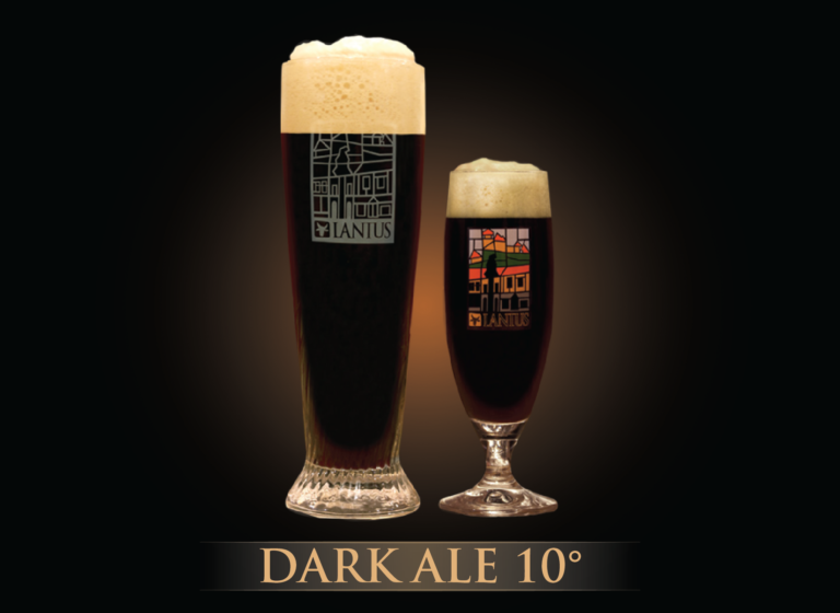Dark Ale 10°