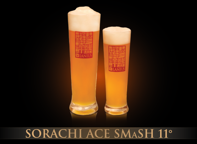 Sorachi Ace Smash 11°