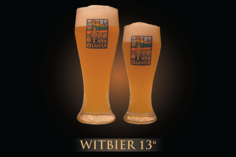 Witbier 13°
