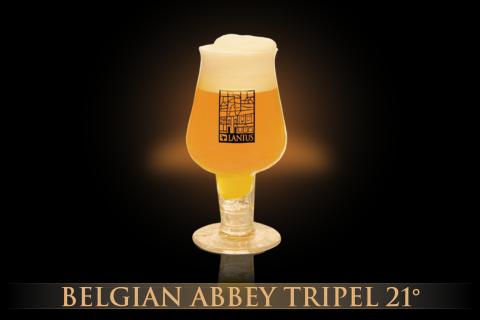 Belgian Abbey Trippel 21°