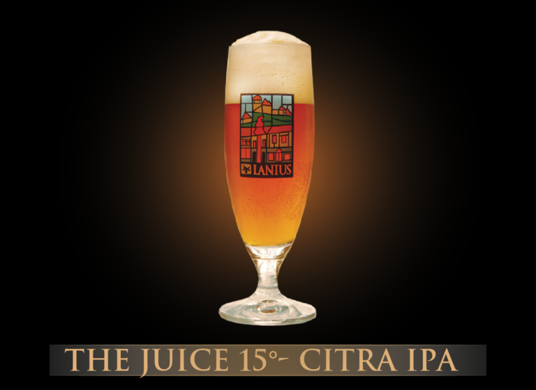 The Juice 15°-Citra IPA