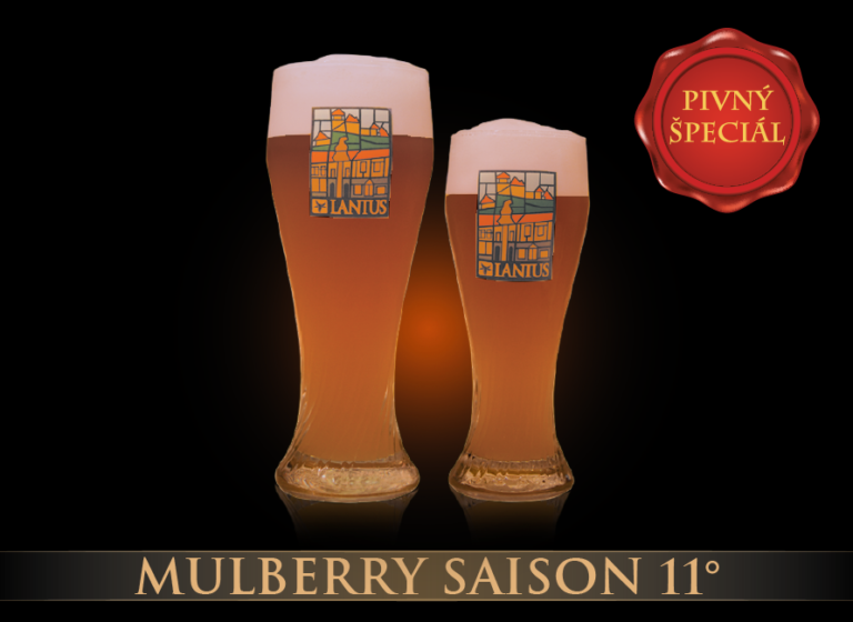 Mulberry Summer Ale 11°