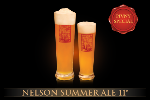Nelson Summer Ale 11°