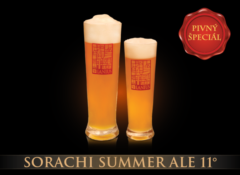 Sorachi Summer Ale 11°