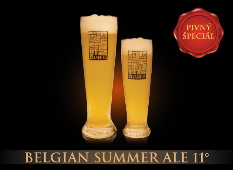 Belgian Summer Ale 11°
