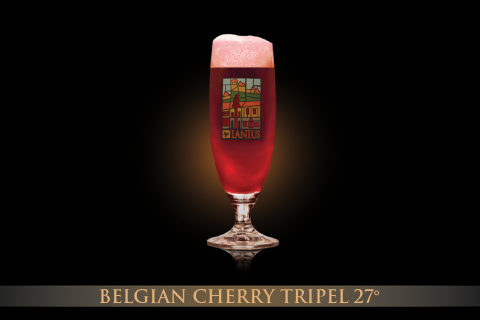 Belgian Cherry Triple Ale 27°