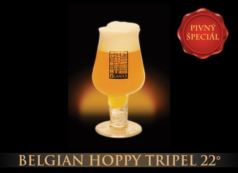 Belgian Hoppy Tripel 22°