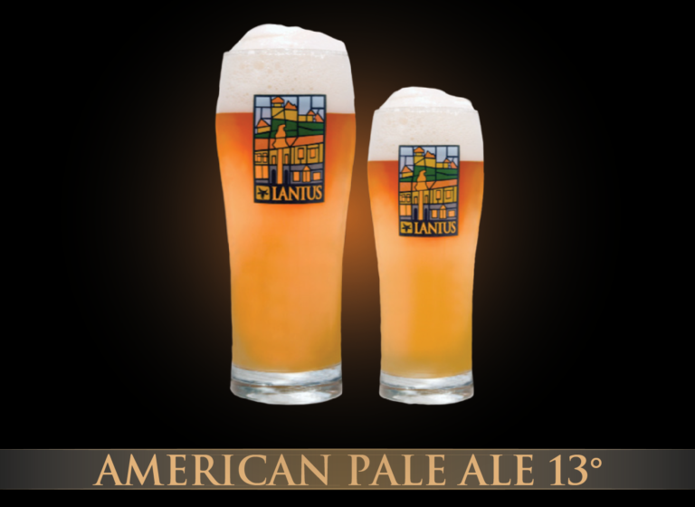 American Pale Ale 13°