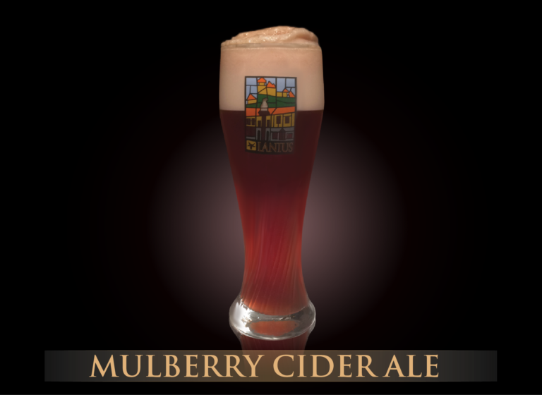 Mulberry Cider Ale