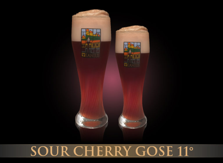 Sour Cherry Gose 11°