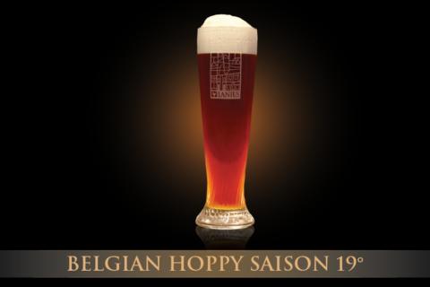 Belgian Hoppy Saison 19°