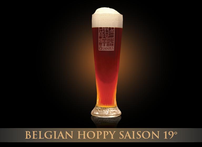 Hoppy Saison 19°