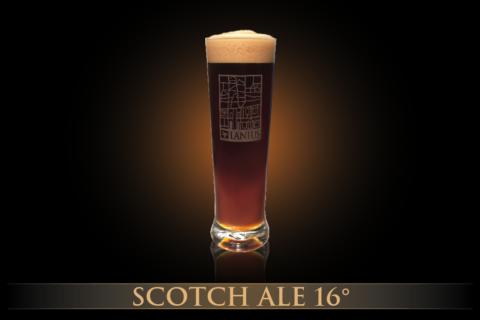 Scotch Ale 16°