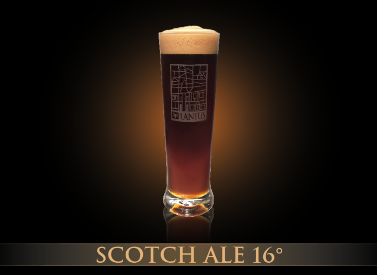 Scotch Ale 16°