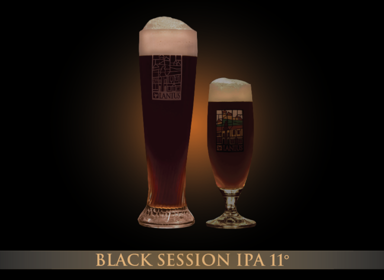 Black Session IPA 11°