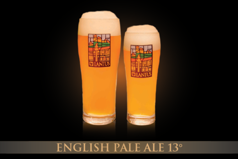 English Pale Ale 13°