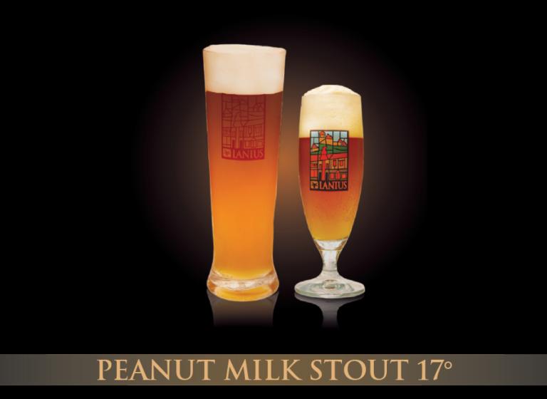 Peanut Milk Stout 17°