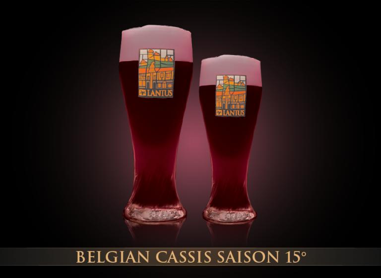 Belgian Cassis Saison 15°
