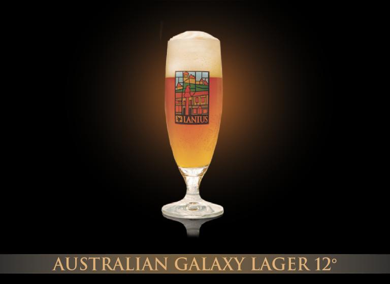 Australian Galaxy Lager 12°