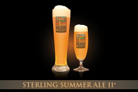 Sterling Summer Ale 11°