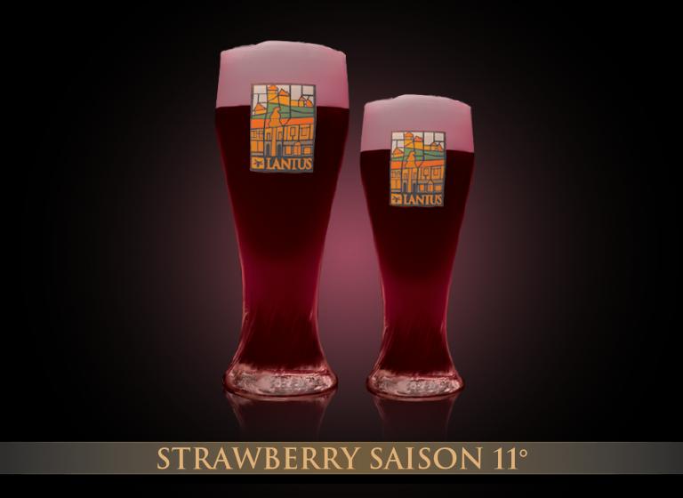 Strawberry Saison 11°